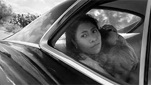 Roma is a Gift (and the Best Film of 2018) Image
