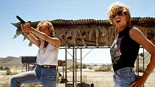 Still Not Over the Canyon - Thelma and Louise at 25 Image